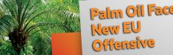 Palm Oil Faces New EU Offensive