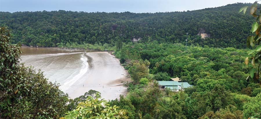Sarawak Strengthens Forest Conservation